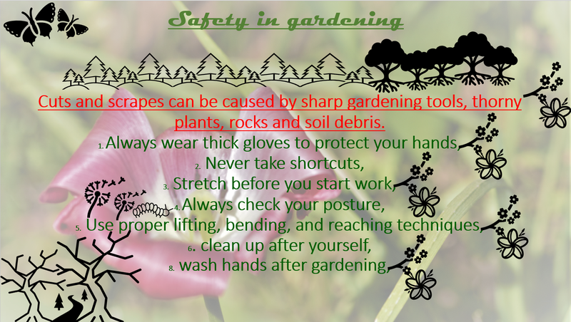 Health and Safety when doing gardening