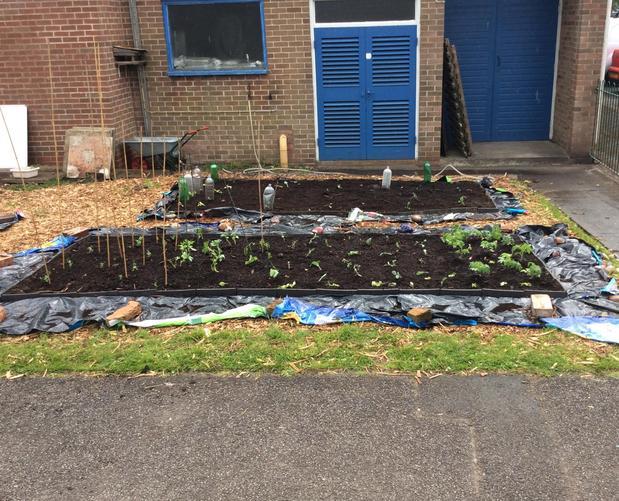 Brand New Eco School Garden