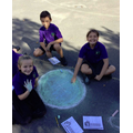 Year Five Science