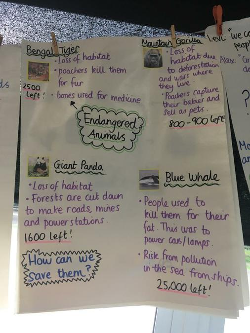 Endangered Animals Year Two