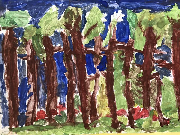Y1/2 Landscape [visit to the pinewoodds]