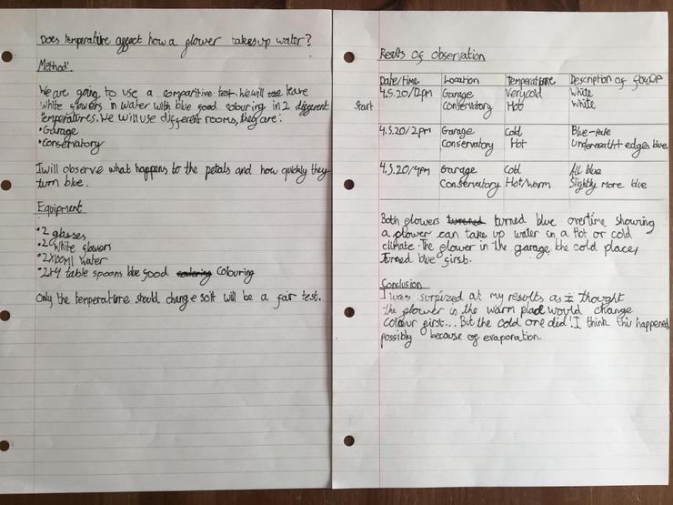Fantastic science work from Thomas