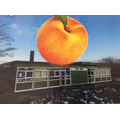 PurpleClass: James' Giant Peach at (on?) Woodlands