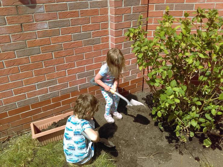 Digging for ... treasure?