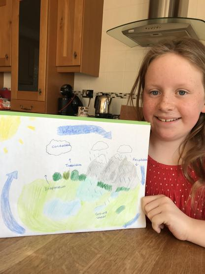 Geography: the water cycle explained