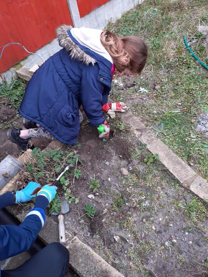 Busy planting