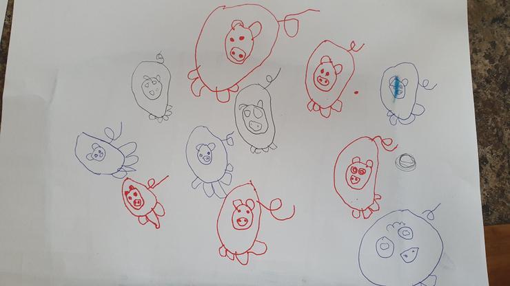 Superb pig drawing