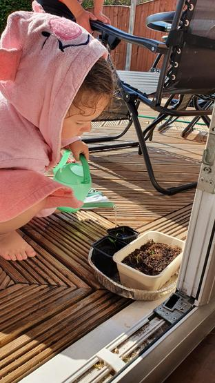 Keep on watering those plants