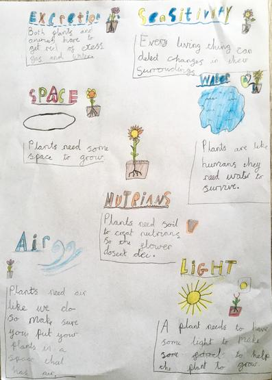 Emma's fantastic science poster