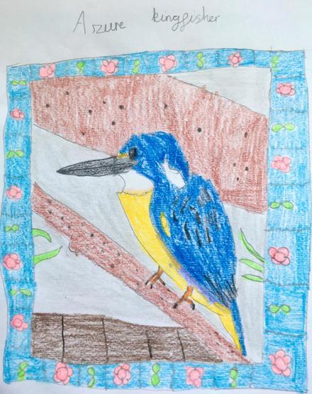 Azure kingfisher by Emma