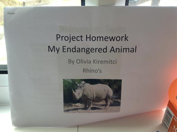 Our fabulous project homework.