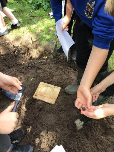 A wooden Tudor artefact has been discovered!