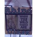 Rhino Class