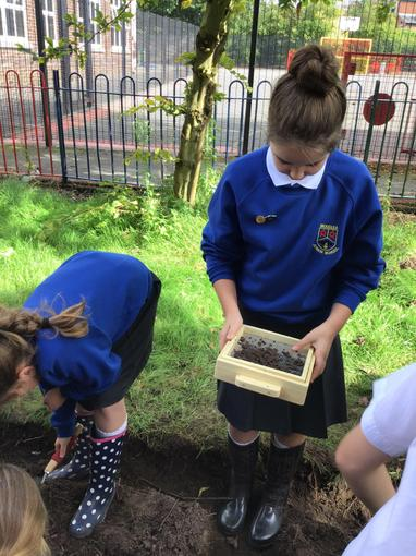 Sifting through the soil to find small objects.