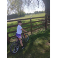 Asa spotted an alpaca on his bike ride