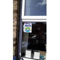 Sams lovely window displays
