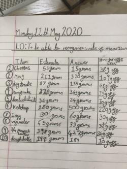 Chloe's super neat mass chart!