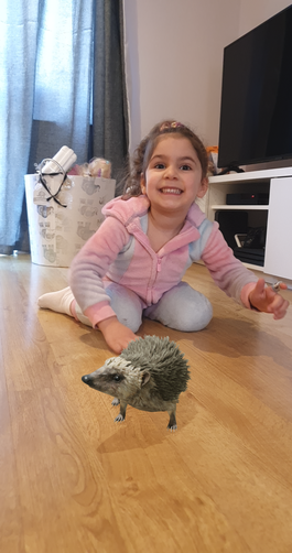 It's a hedgehog!