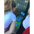 Discovering Bog Baby's Habitat!