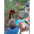 We had a fantastic day at Twycross Zoo!