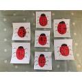 Ladybird Maths