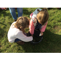 Selecting plants to paint our chalks with