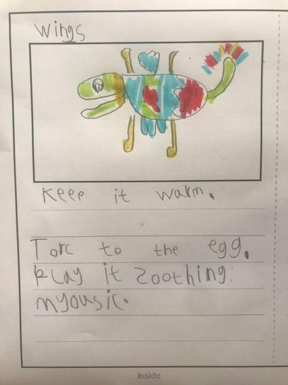 Josh wrote a wonderful fact book about looking after the egg!