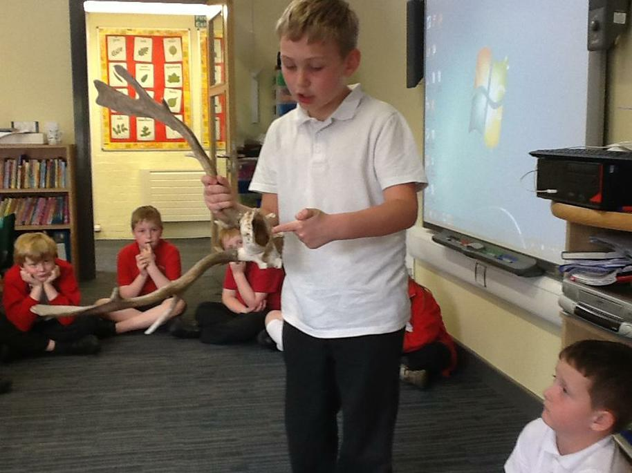 Using artefacts