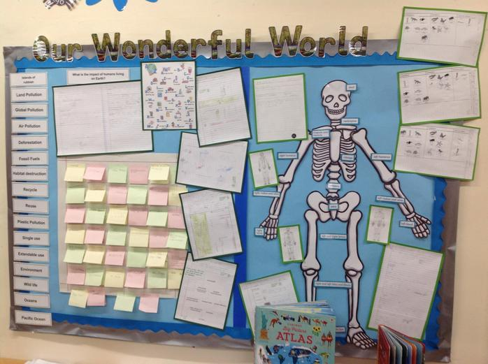 A display celebrating our learning so far...