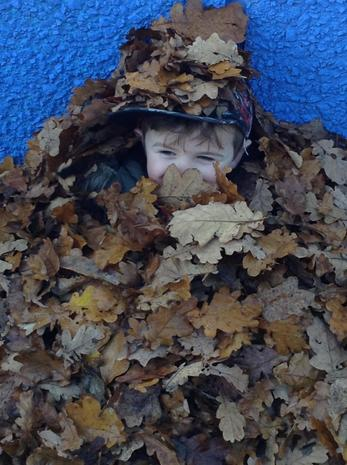 Autumn Fun!