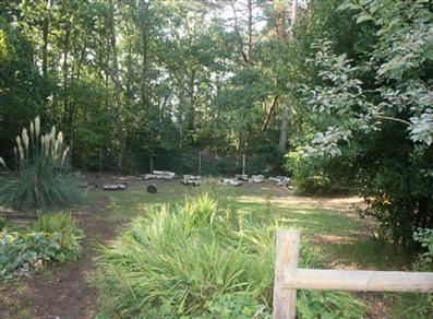 Wyke Woodland