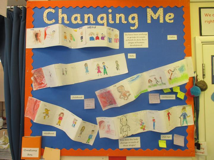 "Kingfisher Class ""Changing Me"" display"