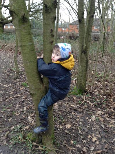 We have been climbing the trees.