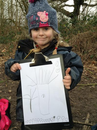 We have drawn some pictures.