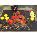 Take a look at our bonfire art!