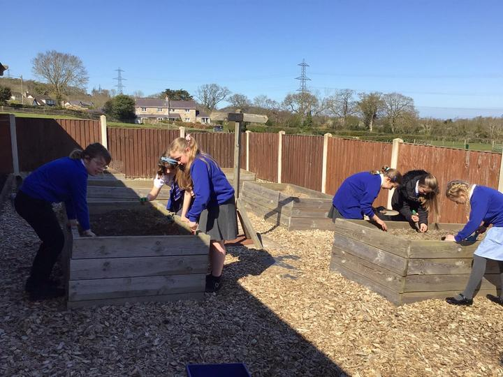 Preparing the soil in our planters ready for growing vegetables