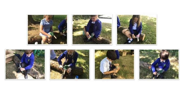Learning the skill of whittling