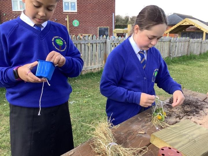 Making hay parcels for the bugs in our new bug hotel