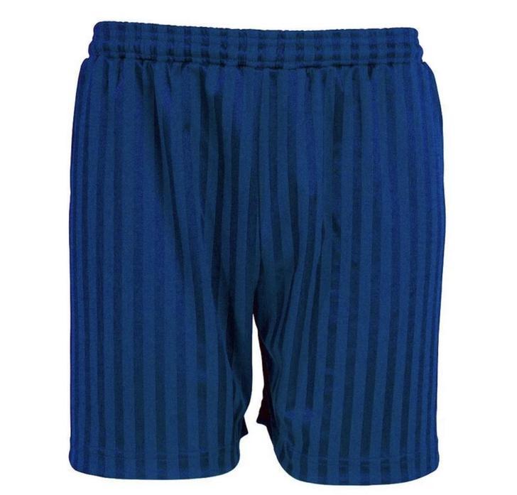 PE Kit - Royal shadow stripe shorts
