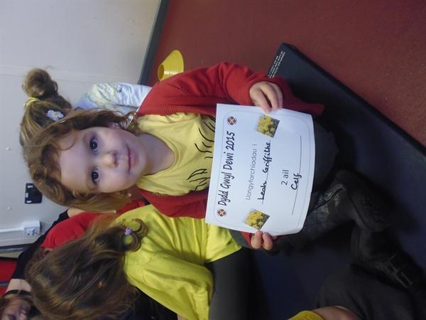 Llys Cadog (Melyn/Yellow)