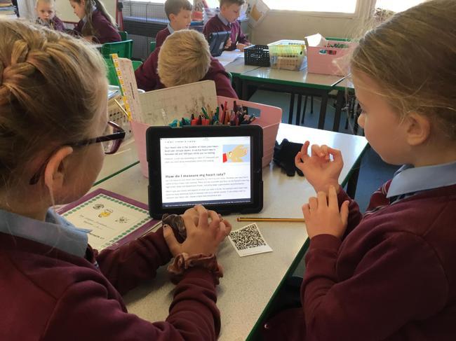 Mesur curiad y galon/ measuring our heart rate
