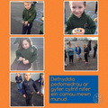 Using pedometers to count steps
