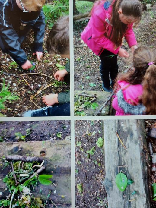 Treasures in the Garden activities