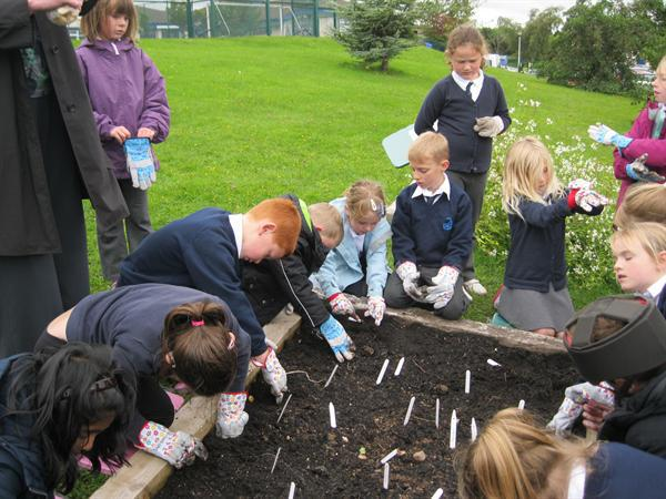 We worked with gardening gloves on.
