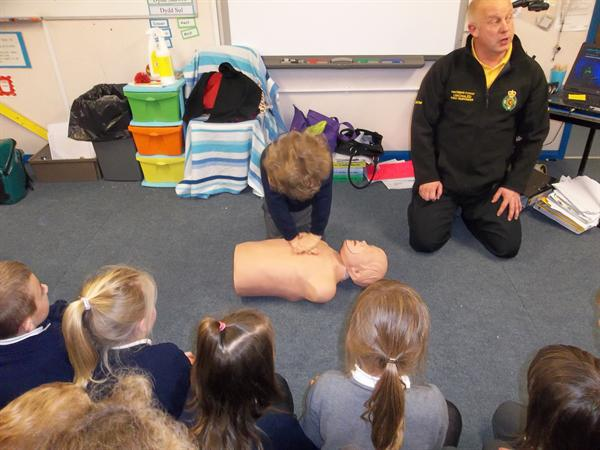 Using the dolls to perform CPR