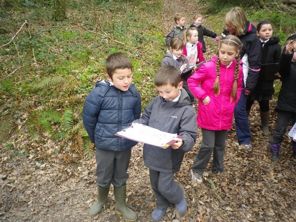 Using a map to find our way around the woods