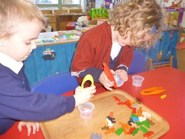 Developing fine motor skills using large tweezers