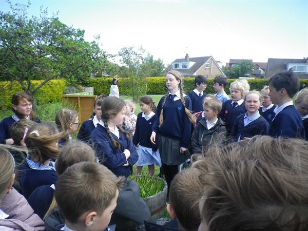 Discussing how to improve the KS2 garden
