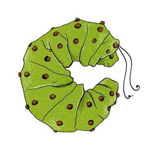 Curl around the caterpillar.