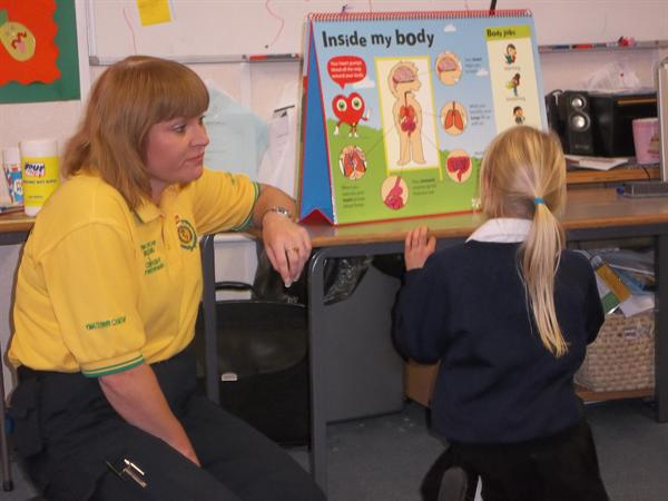 Learning what the different parts of our bodies do